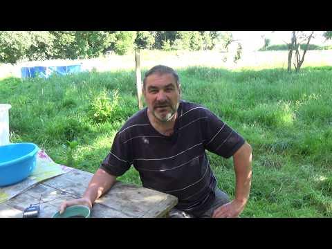 INTERVIEW DE GERARD DUCERF PAR FRANCK NATHIE