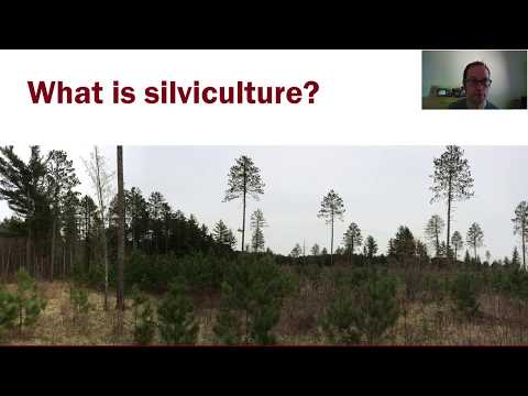 Intro to Silviculture, part 1
