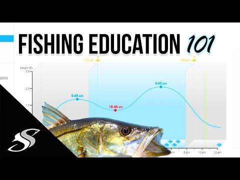 Fishing How To - Understanding Tidal Coefficient, Barometric Pressure & Solunar!
