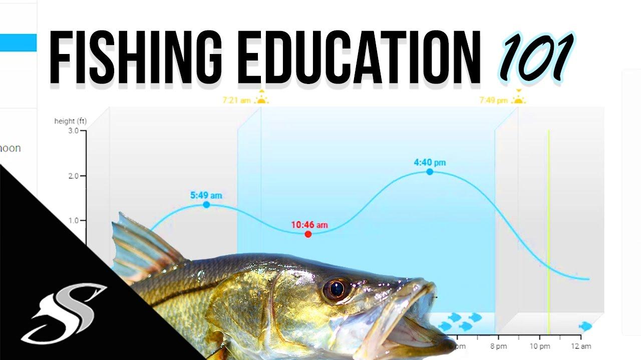 Fishing How to - Understanding Tidal Coefficient, Barometric Pressure &  Solunar!