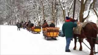 Horse Drawn Sleigh Rides In Ojcow National Park Near Krakow