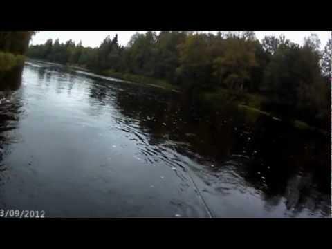 В Вологде из берегов вышли малые реки