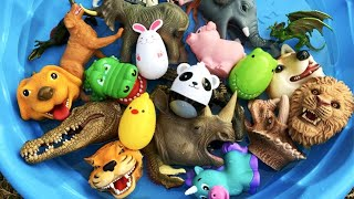 Learn the English names of animals using wild toys-sharks, elephants, lobsters, dinosaurs, giraffes