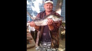 Рыбалка на Волге 2019. Саратов. Видео от наших друзей