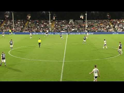 Fulham v Millwall highlights