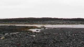полуостров Рыбачий на Кольском