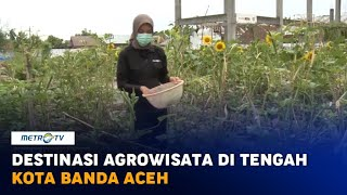 Destinasi Agrowisata di Tengah Kota Banda Aceh