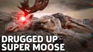 Far Cry 5 in 4K - The Judge Moose Mission Gameplay