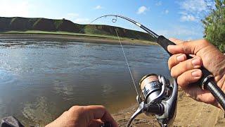 На такой рыбалке я ещё не бывал Рыба глотает попперы и гнёт удочку в дугу