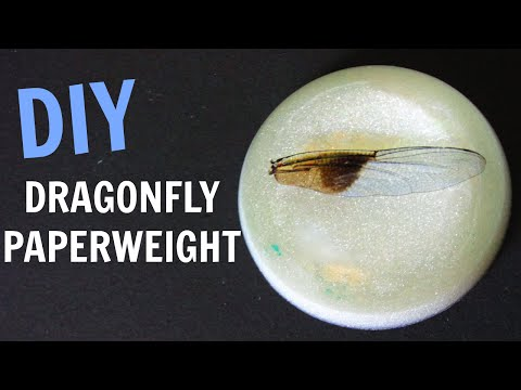 Dragonfly Wing Paperweight | DIY Project | Craft Klatch | Resin How To