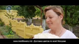 Доставка подарков Яловены село Мисовка. Доставка цветов в Яловенах.