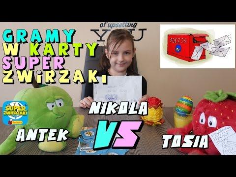 GANG ŚWIEŻAKÓW - TOSIA VS ANTEK & NIKOLA / GRAMY W KARTY SUPER ZWIERZAKI
