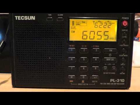 Radio exterior espana on tecsun PL 310 DSP