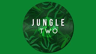Jungle Mix Two [Deep/Soulful] (N473)