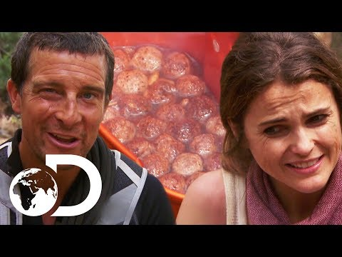Keri Russell Eats Rabbit Poo Stew For Dinner  Running Wild With Bear Grylls