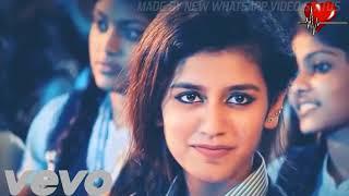 Priya variyar Viral video