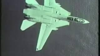 F-14 Tomcat - MiG Killer