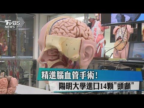 精進腦血管手術! 陽明大學進口14顆「頭顱」