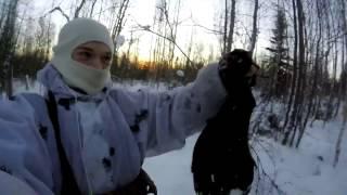 Охота на тетерева в Архангельской области 2017
