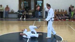 amazing tae kwondo demonstration