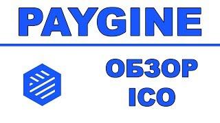 Полный Обзор Paygine ICO - Банковские Услуги для Криптоиндустрии