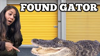 found-real-alligator-i-bought-abandoned-storage-unit-locker-opening-mystery-boxes-storage-wars