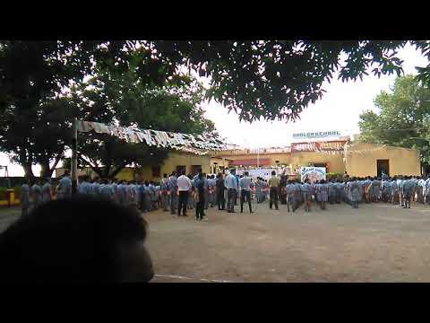 Shalom school parade show
