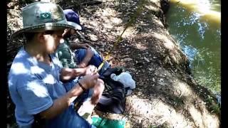 Pesca de lambari com arroz
