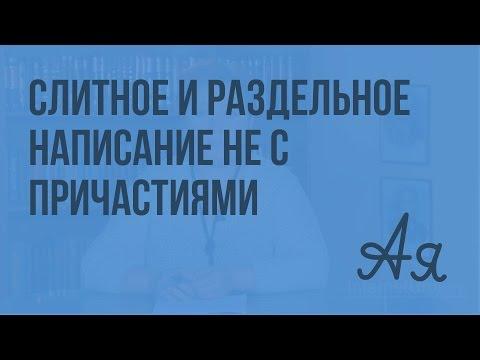 Слитное и раздельное написание НЕ с причастиями. Видеоурок по русскому языку 7 класс