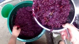 Вино из винограда Молдова.