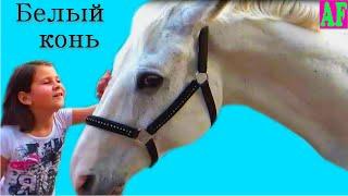 #Анжела гладит #белого коня #Ускакала поля молодая лошадь Детская песенка