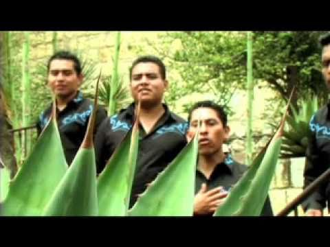 GRUPO INSPIRACION ALEGRA TV GRUPERO TE AMO NECESARIAMENTE. VIDEO OFICIALmov