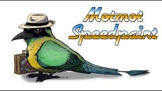Bird Speedpaint - Panama Motmot