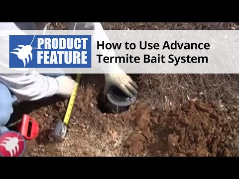 how-to-use-the-advance-termite-bait-station-system-to-prevent-termites