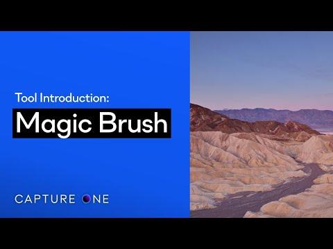 Capture One 21 Tool Introduction | Magic Brush