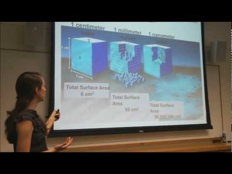 Nanotechnology And The Environment - A General Introduction