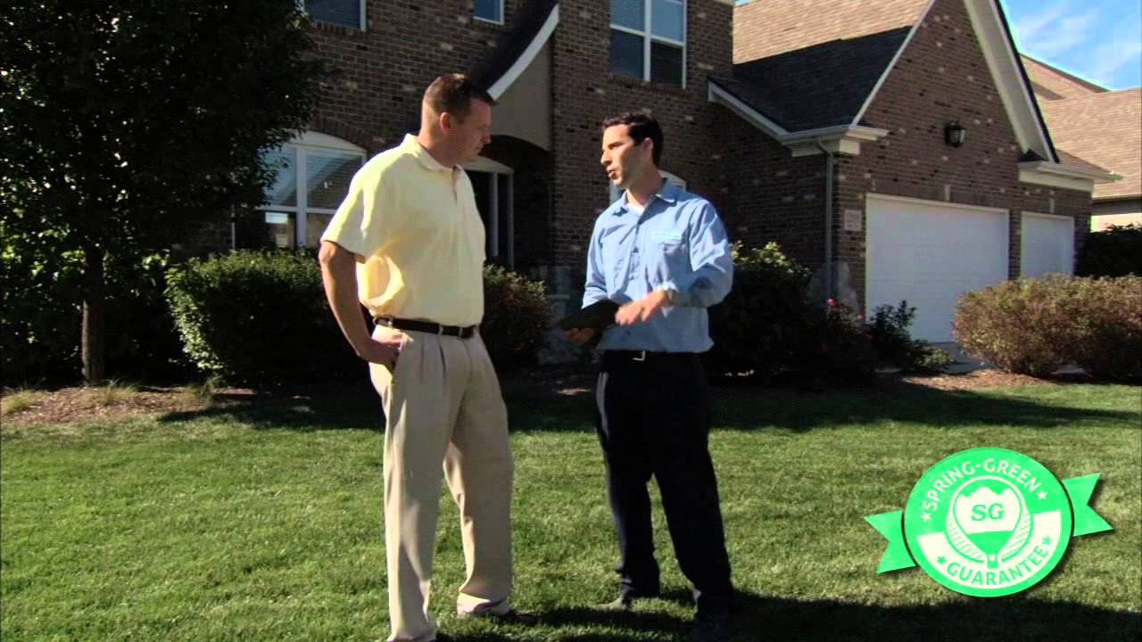 Lawn Care Weed Control Wausau Wi Spring Green