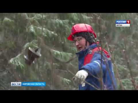 Вести. Кировская область (Россия-1) 06.11.2019(ГТРК Вятка)