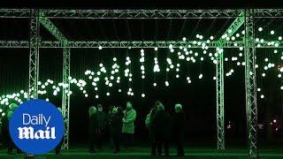 Salisbury Cathedral illuminated by hundreds of Christmas lights
