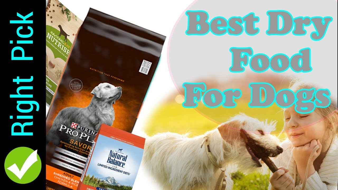 Dog Food Best Dry Dog Food Best Dry Dog Food 2018 Best Dry Dog