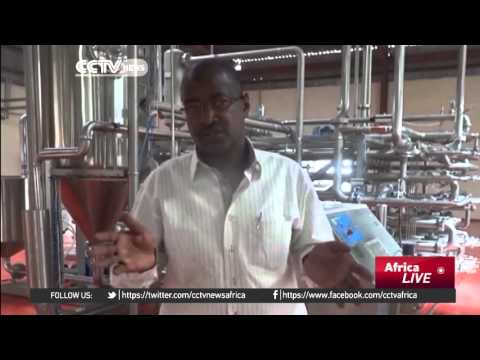 Aliko Dangote builds factory to create jobs