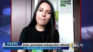 #CncNoticiasPasto -Al Cierre   2da. Jornada adopción virtual, 16 agosto Alianza Pro Animal
