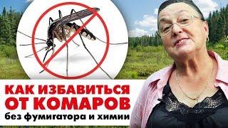 видео Как избавиться от комаров