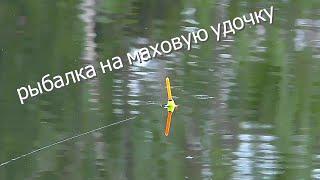 лещ на маховую удочку ночью рыбалка на озере
