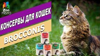 Консервы для кошек Брокконайс   Обзор Консерв Брокконайс   Animonda Brocconis review