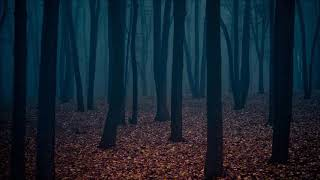 (Free) Horror Ambiance - Ominous Background Music