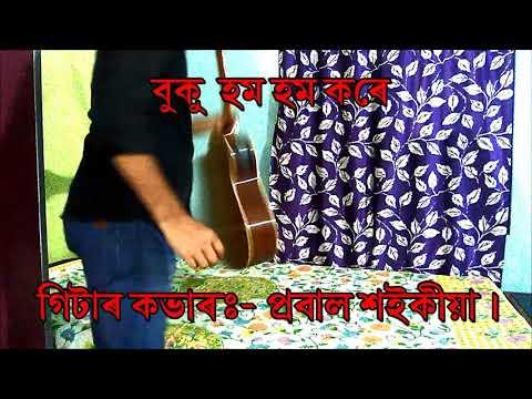 Buku Hom Hom Kore.. Dr. Bhupen Hazarika / Guitar Instrumental By:- Probal Saikia