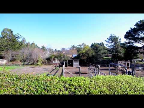 50 Mesa Rd - Point Reyes CA | Point Reyes Station Homes For Sale