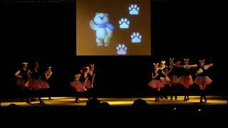 Танец-Hello,Bear!-СПФ.Студенческая весна 2014