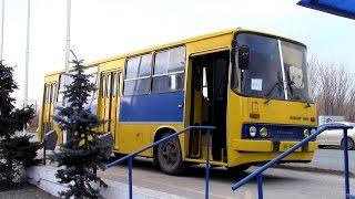 IKARUS 260  г Тольятти , автобус продан.(, 2016-11-16T19:30:16.000Z)